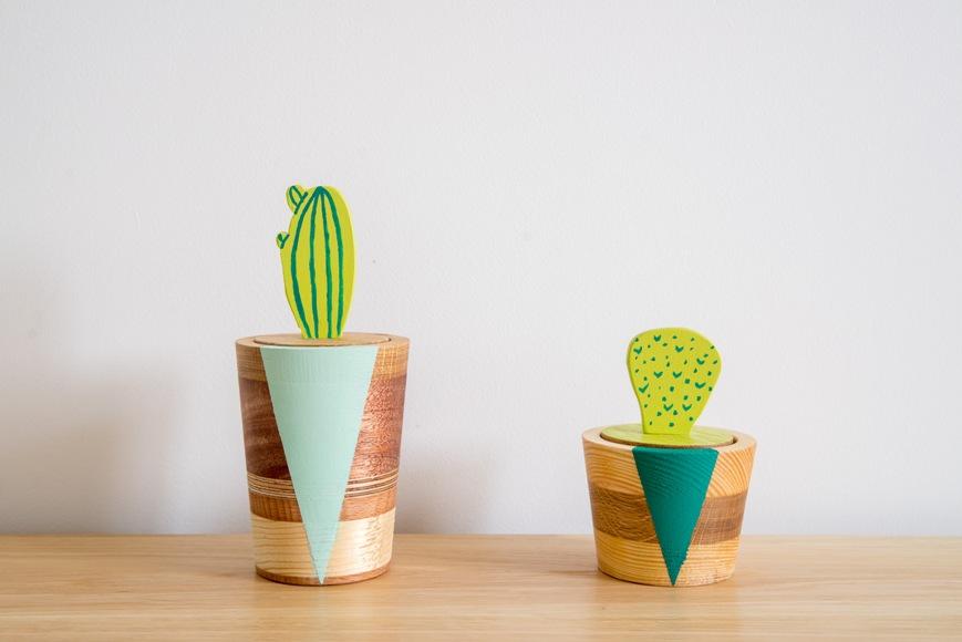 1 zestaw kaktusów